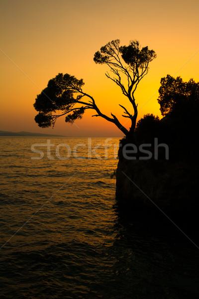 Brela Rock silhouette - Splendid seacoast of Croatia Stock photo © lightpoet
