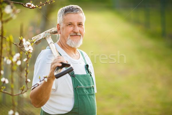 Stock photo: Portrait of a handsome senior man gardening in his garden