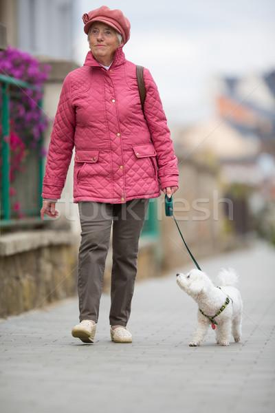 Stockfoto: Senior · vrouw · lopen · weinig · hond · straat