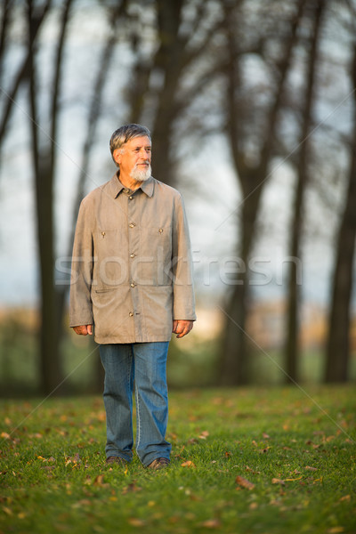 Portrait of a senior man outdoors, walking in a park Stock photo © lightpoet
