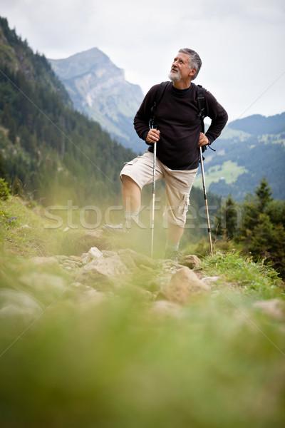 Stockfoto: Actief · senior · wandelen · hoog · bergen · alpen