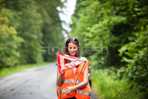 Young female driver after her car has broken down Stock photo © lightpoet