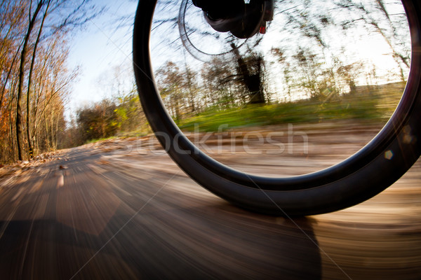 Bicycle riding in a city park on a lovely autumn/fall day Stock photo © lightpoet