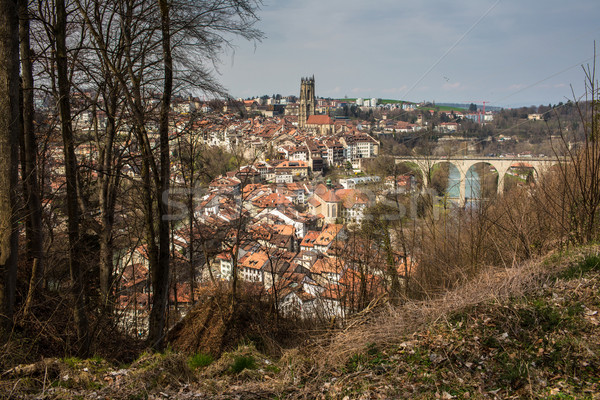 View of Fribourg, Switzerland Stock photo © lightpoet