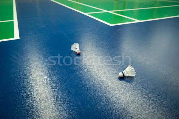 Badminton dois raso cor fitness Foto stock © lightpoet