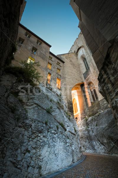 Splendid gothic Popes' Palace in Avignon, France  Stock photo © lightpoet
