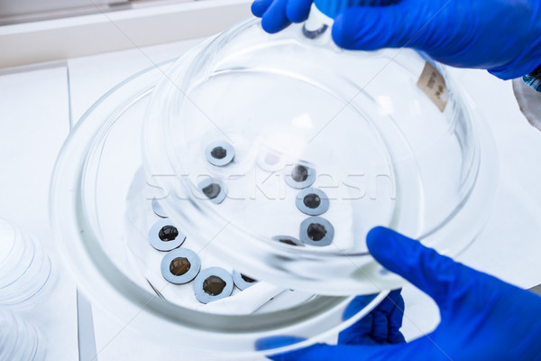 Hands of a researcher carrying out scientific research experiments Stock photo © lightpoet