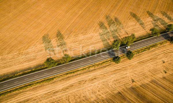Légifelvétel vidéki út mezők autó fa utazás Stock fotó © lightpoet