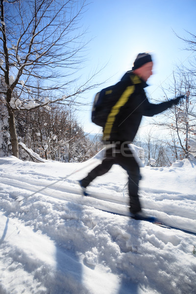 young man cross-country skiing on a lovely sunny winter day Stock photo © lightpoet