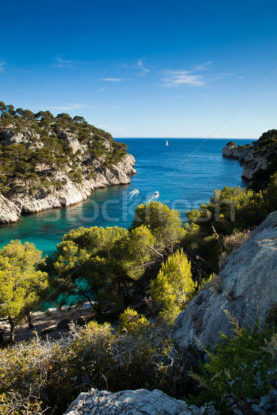 Splendid southern France coast (Calanques de Cassis), southern F Stock photo © lightpoet