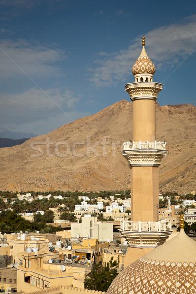 Oszałamiający widoku miasta góry ogłoszenie niebo Zdjęcia stock © lightpoet