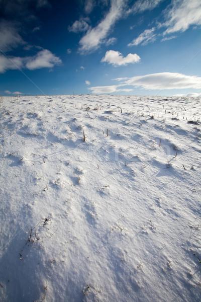 Montanha cenário profundo blue sky céu estrada Foto stock © lightpoet