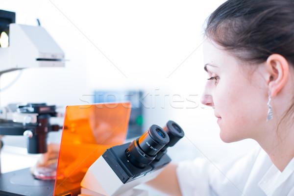 Foto stock: Retrato · feminino · investigador · pesquisa · lab · microscópio