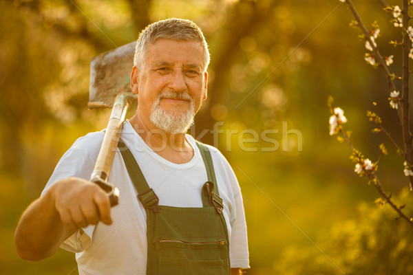 Stock photo: Portrait of a handsome senior man gardening in his garden