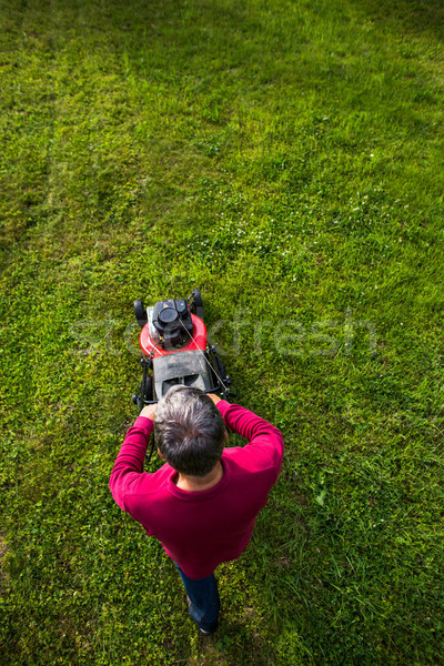 Senior man mowing the lawn in his garden Stock photo © lightpoet