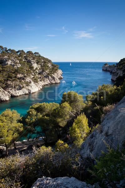 Splendid southern France coast (Calanques de Cassis), southern France Stock photo © lightpoet