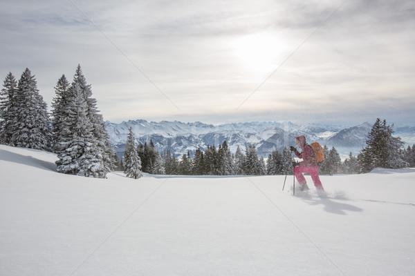 Bastante mulher jovem alto montanhas inverno Foto stock © lightpoet