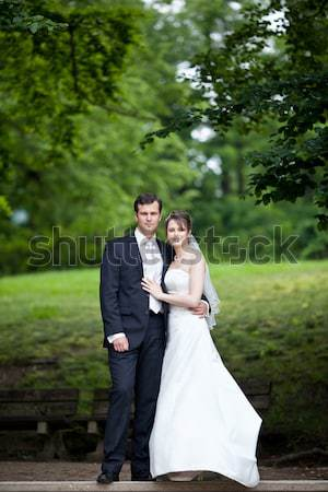 Just married, young wedding couple in a park, walking Stock photo © lightpoet