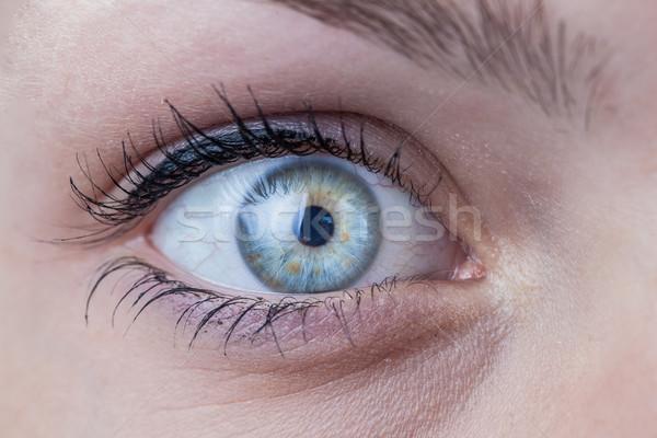 Közelkép gyönyörű női kék szem arc Stock fotó © lightpoet