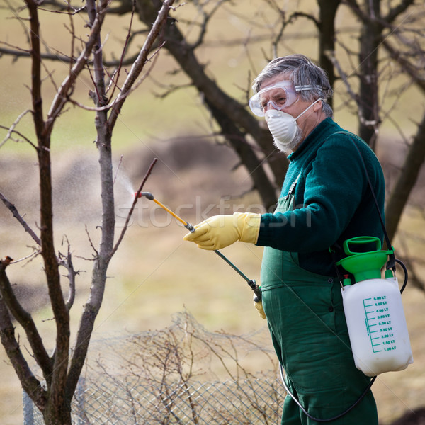 Productos químicos jardinero fertilizante frutas primavera Foto stock © lightpoet
