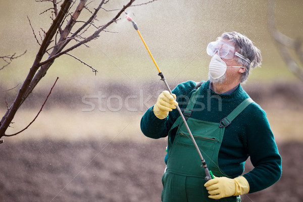 Chemikalia ogrodnik nawóz owoców wiosną Zdjęcia stock © lightpoet