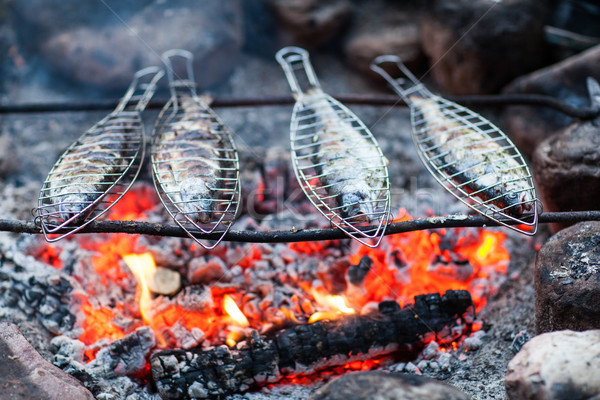 Izgara balık kamp ateşi orman doğa et Stok fotoğraf © lightpoet