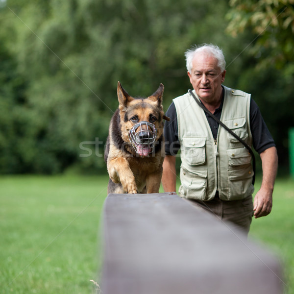 Master and his obedient dog at a dog training  center Stock photo © lightpoet