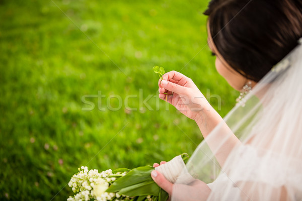 Bride on her wedding day with lucky fortune clover she has just  Stock photo © lightpoet