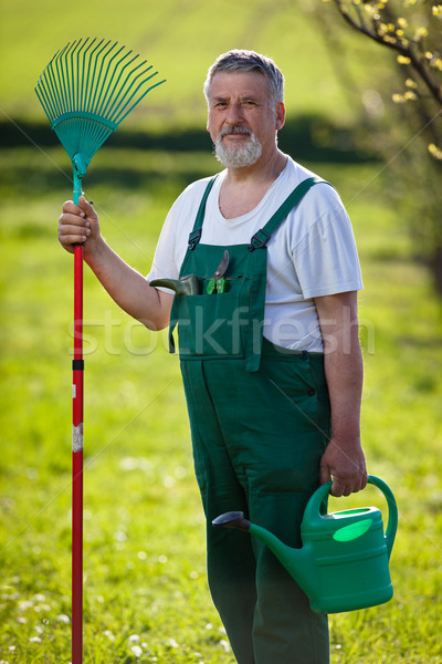 portrait of a senior man gardening in his garden (color toned im Stock photo © lightpoet