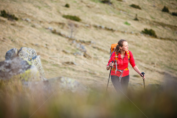 Pretty, young woman hiking in mountains Stock photo © lightpoet
