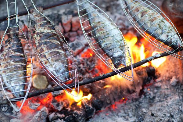 Grilling fish on campfire Stock photo © lightpoet