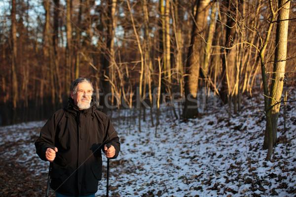 Senior man nordic walking, enjoying the outdoors, the fresh air, Stock photo © lightpoet