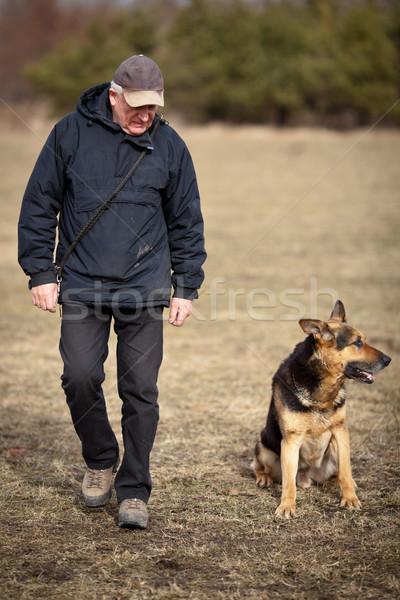 マスター 従順な 羊飼い 犬 男 健康 ストックフォト © lightpoet