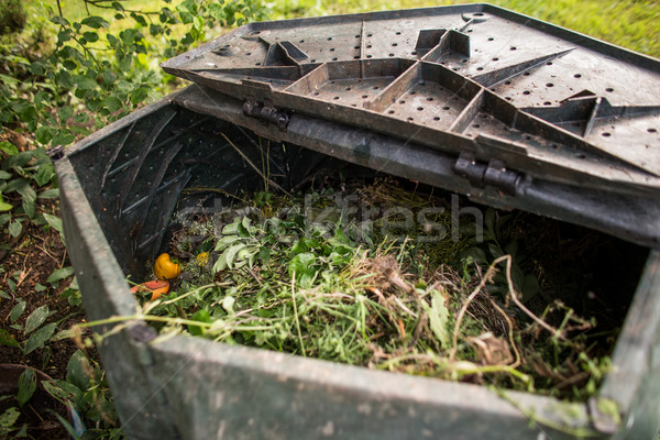Plastic composter in a garden - filled with decaying organic mat Stock photo © lightpoet