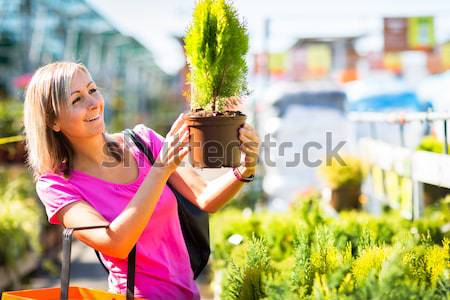 Compra flores jardín centro flor Foto stock © lightpoet