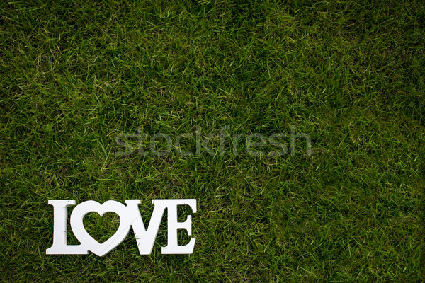 Love is in the air and on the green - Word LOVE lying in lush Stock photo © lightpoet