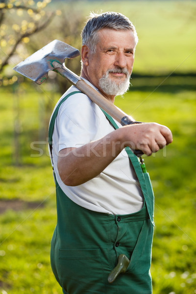 Portret senior man tuinieren tuin kleur Stockfoto © lightpoet