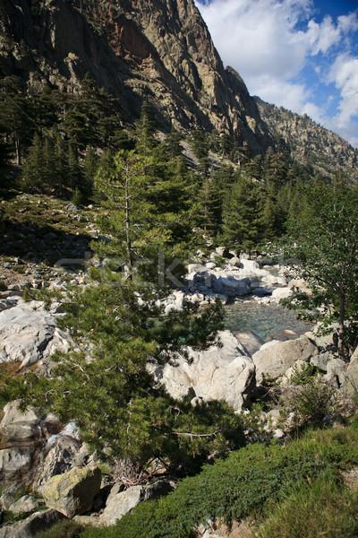 ストックフォト: コルシカ島 · 谷 · 自然 · 川 · 山