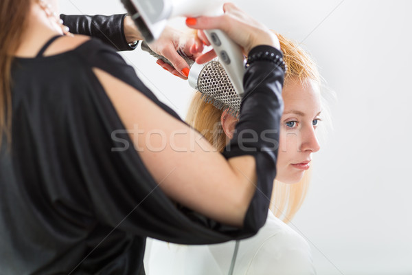 Hairdresser/Hairstyle artist working on a young woman's hair, gi Stock photo © lightpoet