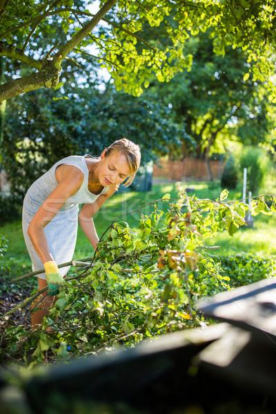 Dość młoda kobieta ogrodnictwo ogród cięcie Zdjęcia stock © lightpoet