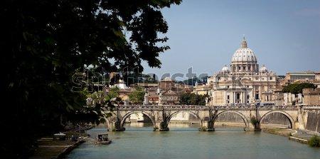 Panoramiczny widoku St Peters Basilica Watykan rzeki około Zdjęcia stock © lightpoet