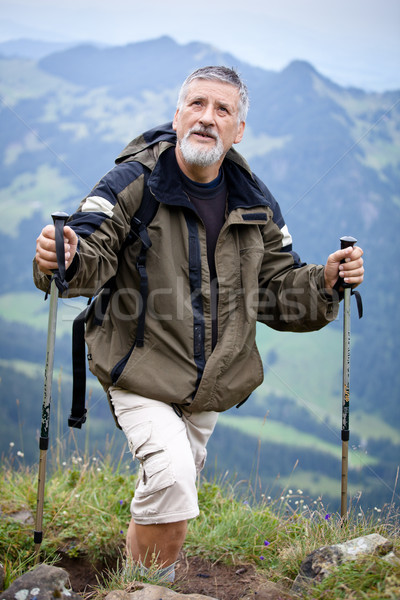 Active senior hiking in high mountains (Swiss Alps)  Stock photo © lightpoet
