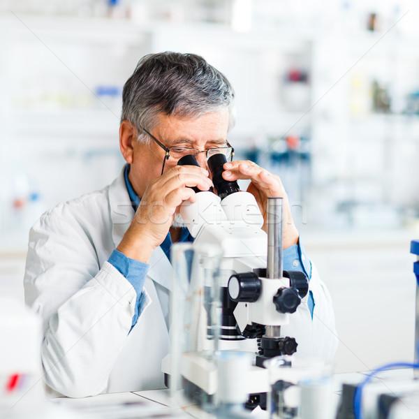 Senior mannelijke onderzoeker uit wetenschappelijk onderzoek Stockfoto © lightpoet