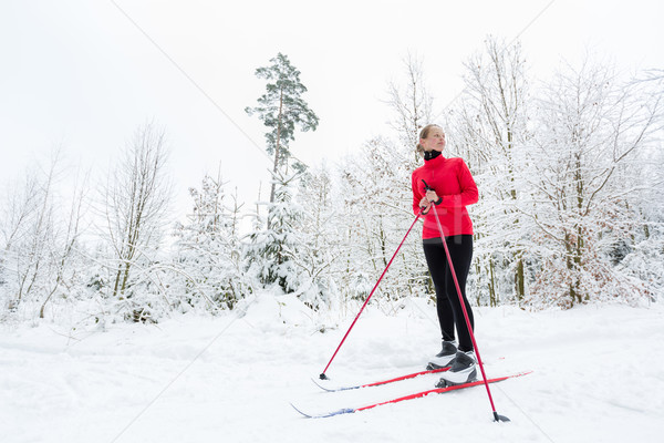 Cross-country skiing: young woman cross-country skiing  Stock photo © lightpoet