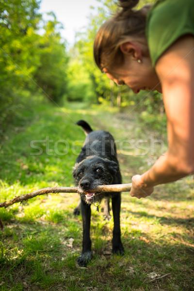 Walking the dog - throwing the stick Stock photo © lightpoet