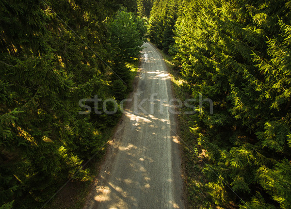 Stock photo: Aerial view of a forest road