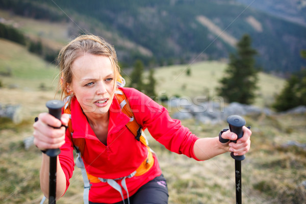 Pretty, young female hiker having a tough walk uphill Stock photo © lightpoet