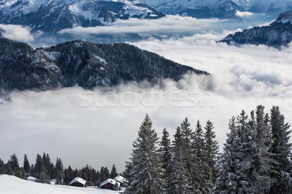 冬 高山 風景 高い 山 木 ストックフォト © lightpoet