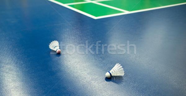 badminton - badminton courts with two shuttlecocks (shallow DOF; Stock photo © lightpoet