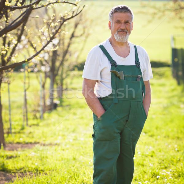 Portret senior tuinman kleur bloem handen Stockfoto © lightpoet